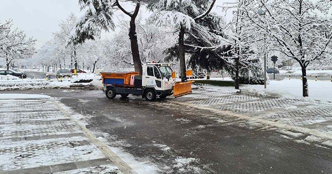 koordinirano-uklanjanje-snega-u-beogradu-0